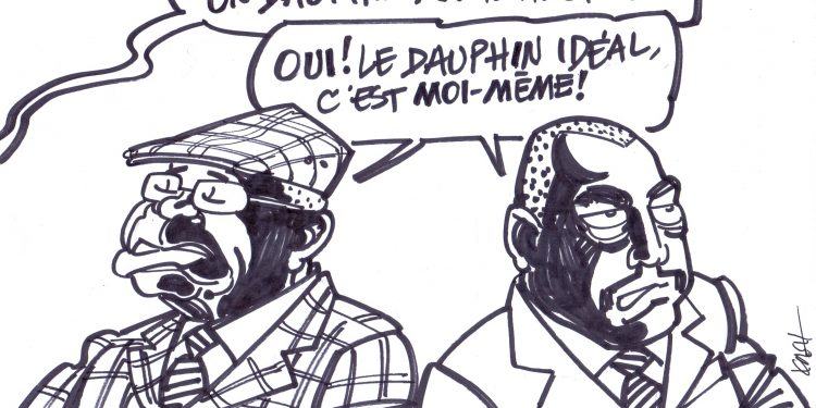 dauphin tshitshi